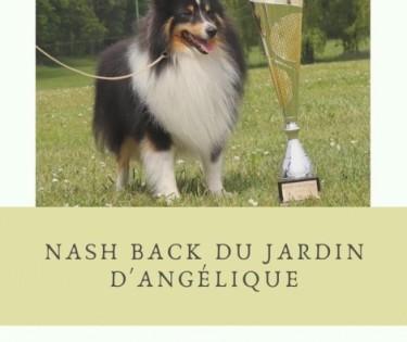 NASH BACK DU JARDIN D'ANGELIQUE